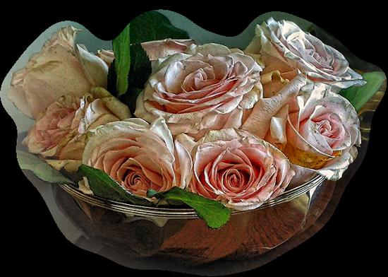 tubes_fleurs_tiram_356