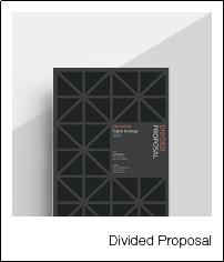 4_dividedproposal
