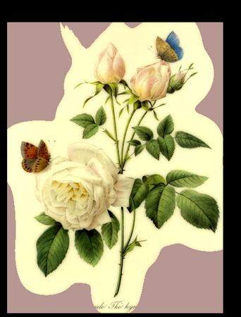 tubes_fleurs_tiram_763