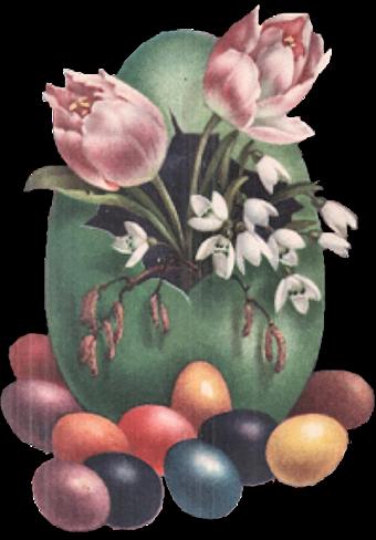 fleurs_paques_tiram_84