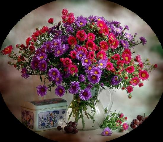 tubes_fleurs_tiram_435
