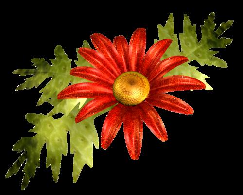 tubes_fleurs_tiram_603