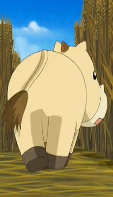 Horse D. Lui